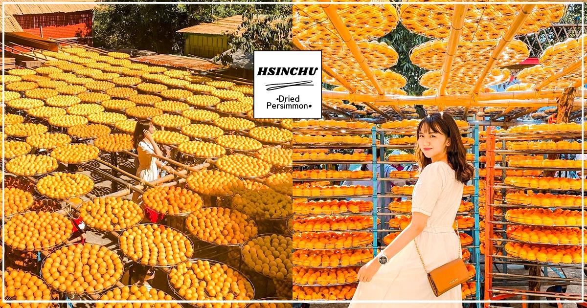 【新竹】免費景點+1! 人氣「味衛佳柿餅觀光農場」必朝聖 期間限定「金黃色柿子海」太好拍~